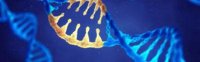 FDA zatwierdza Revcovi na rzadką genetyczną chorobę