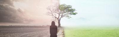 Raport NIK o zapobieganiu i leczeniu depresji