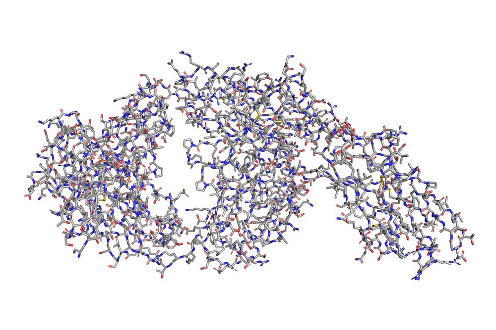 Skuteczność dostarlimabu, przeciwciała przeciw receptorowi programowanej śmierci komórki (anty-PD-1), była oceniana w nierandomizowanym, wieloośrodkowym, otwartym, wielokohortowym badaniu klinicznym GARNET (fot. Shutterstock).